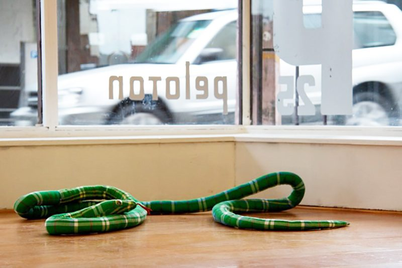 Snake Pi (version 1i)